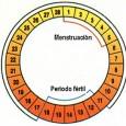 El ciclo sexual femenino